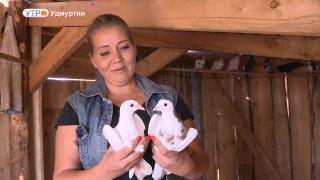 Светлана и голуби из Шарканского района