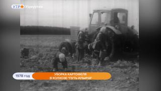 """1978 год. Уборка картофеля в колхозе """"Путь Ильича"""""""